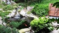 Các kiểu sân vườn biệt thự được yêu thích nhất
